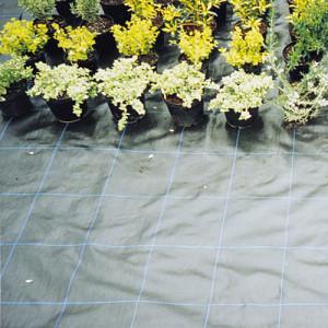 Netting & Fabrics