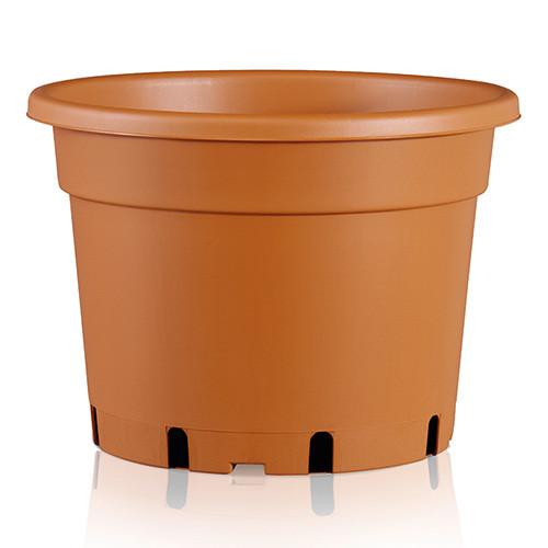 Teku MCD 5° Rigid Large Container