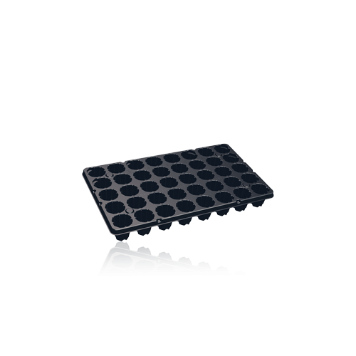 Teku BP Series Plug Tray 40 Cell (768/Pallet,12x64/Box) - Each