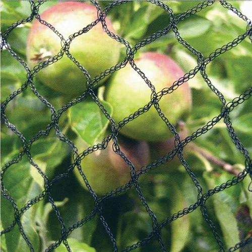 Fruit Cage Net PN1 8.00m x 100m Green
