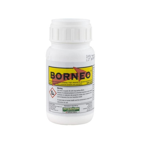 Borneo (MAPP 13919) [250ml]
