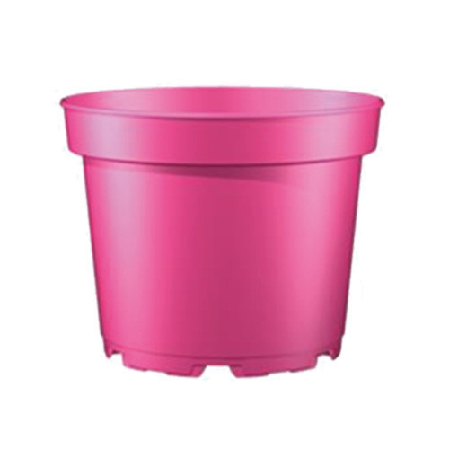 Teku Series MCI Containers 5° Trend Colours