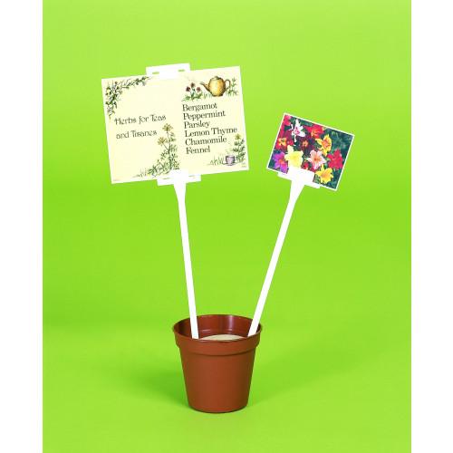"""Card Holders Display Tall 2""""x2"""" SL450 - 25/Box"""
