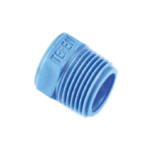 Tefen Blue Bush BSP(M) x BSP(F)