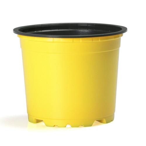Teku Light Pot 5° 10.5cm Trend Colours