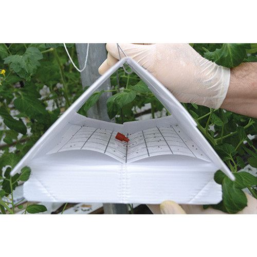 Sticky Inserts for Delta Traps - 10 per Pack